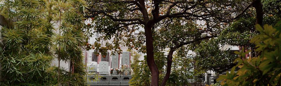 浅草壽仙院 墓地