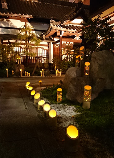 浅草壽仙院 竹灯籠